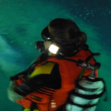 Bright'n up your dive gear - DIVETY from Seareq